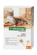 Адвантейдж для кошек более 4х кг